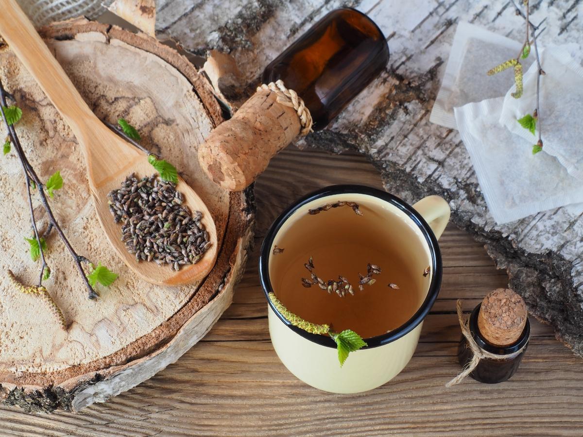 abedul: lo que es, beneficios, recetas de té de hierbas y aceite anticelulítico