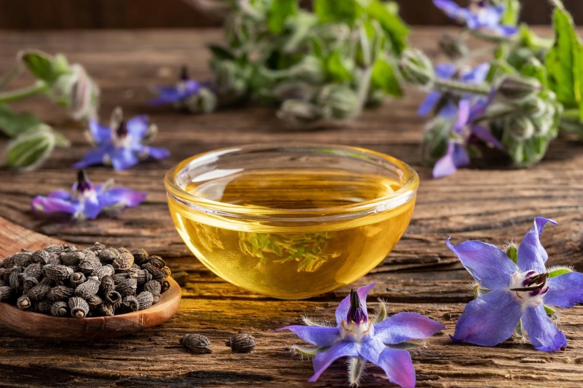 borraja: que es, valores nutricionales, beneficios, usos en belleza y cocina