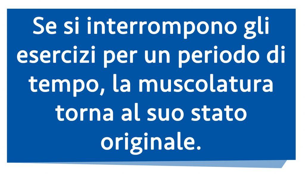 diástasis abdominal: musculatura