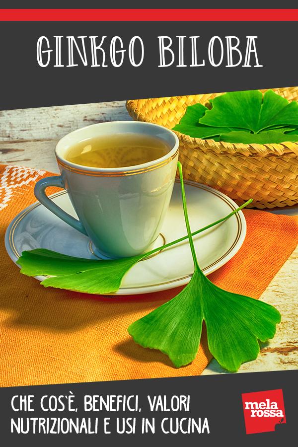 Ginkgo biloba: beneficios y usos en la cocina