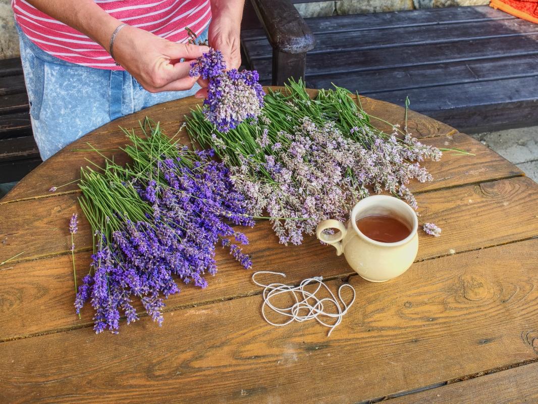 lavanda: té de hierbas relajante