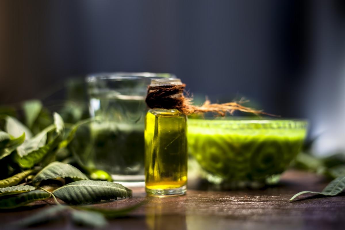 aceite de neem: que es, propiedades, beneficios, usos y contraindicaciones