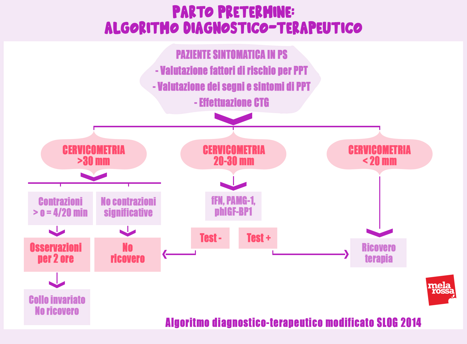 nacimiento en la especie humana: algoritmo de diagnóstico terapéutico del parto prematuro