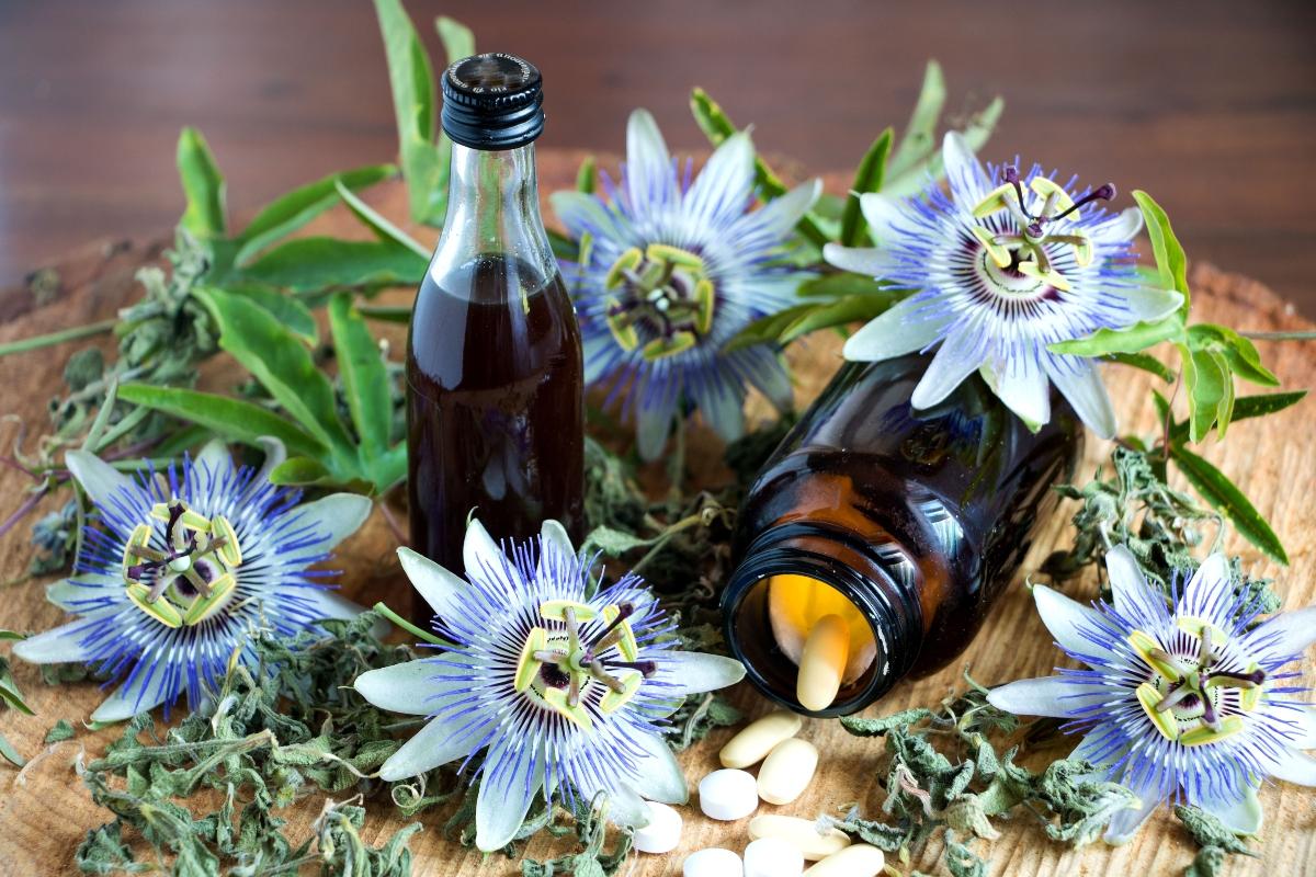 pasiflora: que es, propiedades, beneficios, usos y recetas