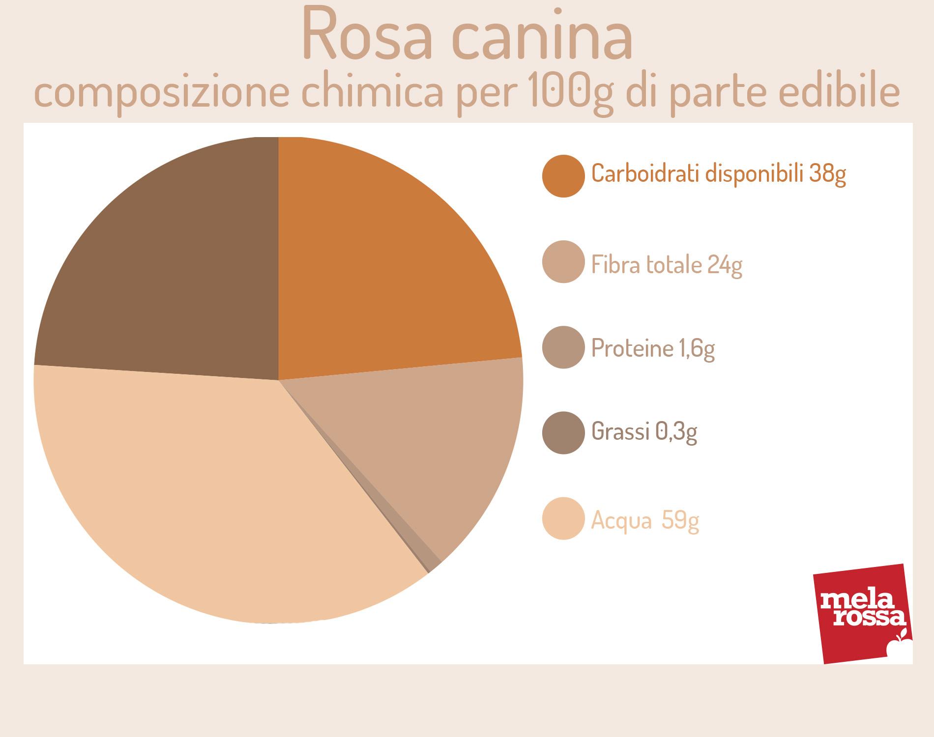 rosa mosqueta: valores nutricionales
