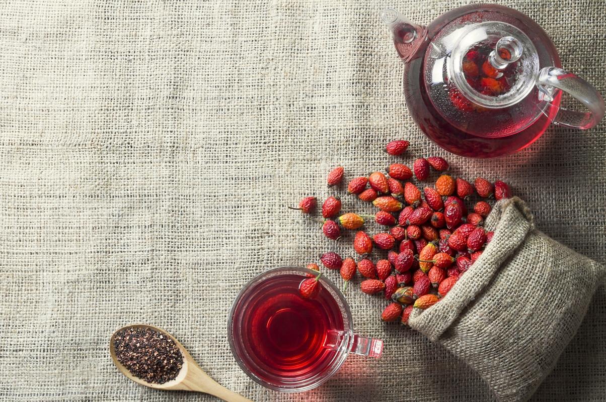 rosa de perro: té de hierbas