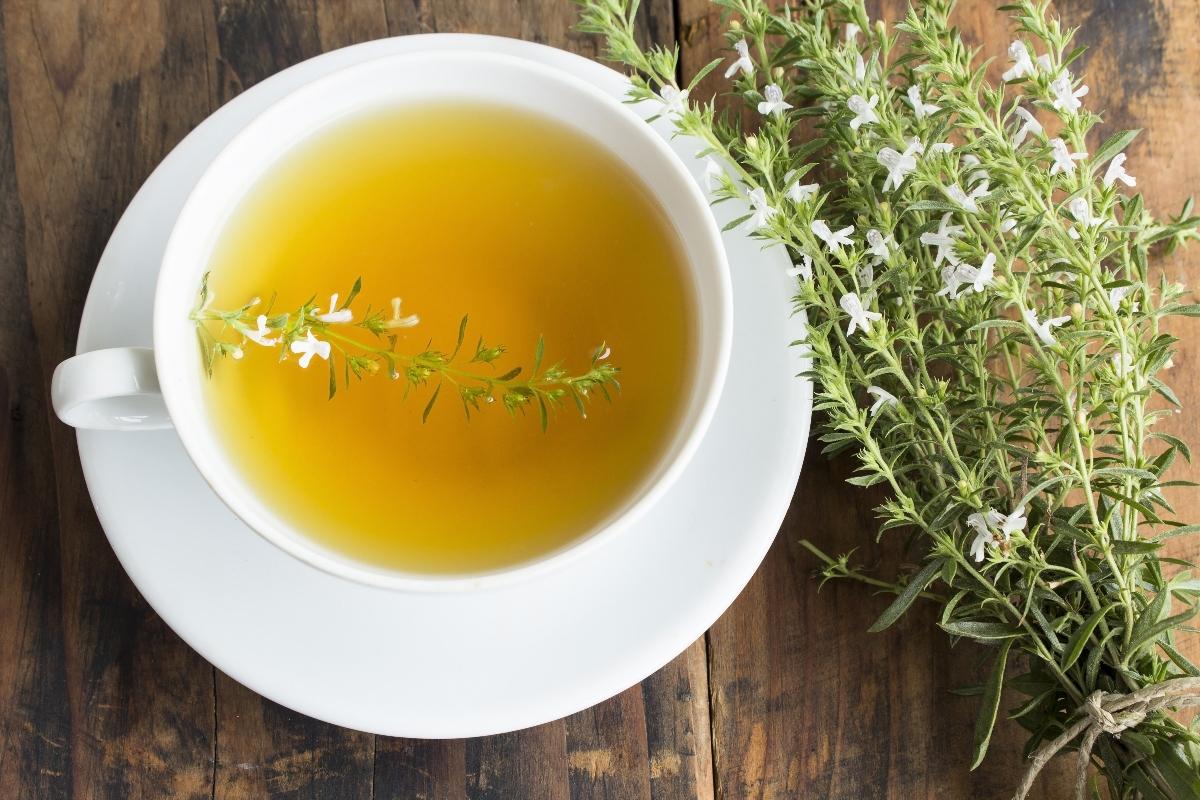 salado: que es, propiedades, beneficios y usos